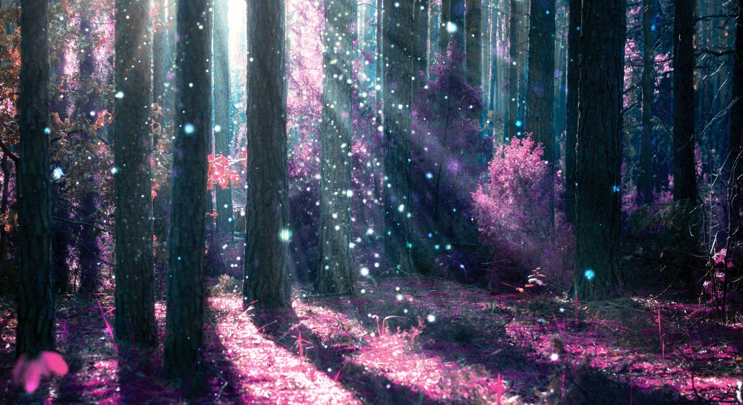violetforest
